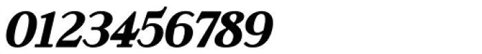Rosengarten Serif Italic Font OTHER CHARS
