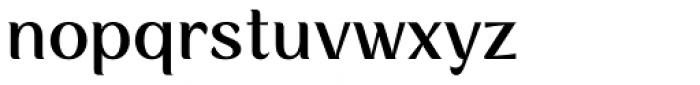 Rossanova Text Medium Font LOWERCASE