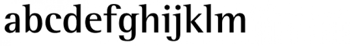 Rotis Semi Serif Pro Bold Font LOWERCASE