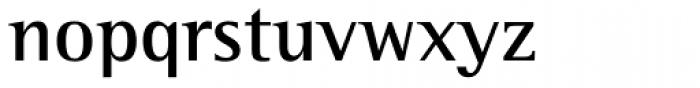 Rotis Semi Serif Std Bold Font LOWERCASE