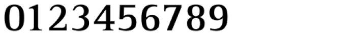 Rotis Serif Pro 65 Greek Bold Font OTHER CHARS