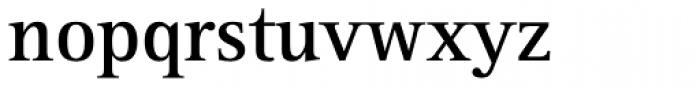Rotis Serif Pro 65 Greek Bold Font LOWERCASE