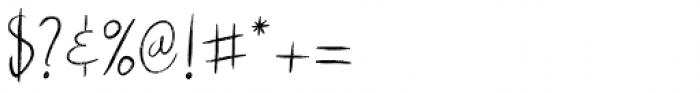 Rough Beauty Script Font OTHER CHARS