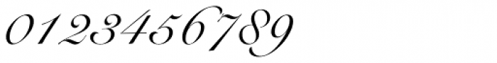 Roundhand Font OTHER CHARS