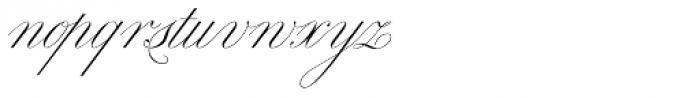 Royal Classic Light Font LOWERCASE