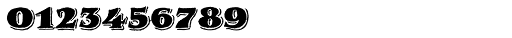 Royal Oak Serif Font OTHER CHARS