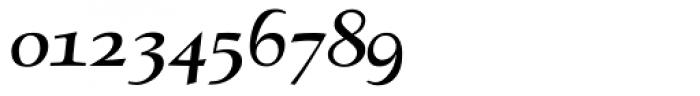 RTF Amethyst Bold Italic SC Font OTHER CHARS