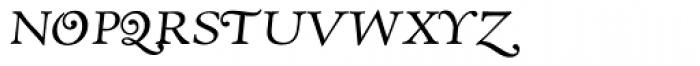 RTF Amethyst Book SWSC Font LOWERCASE