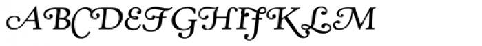 RTF Amethyst Book Sorts Font LOWERCASE