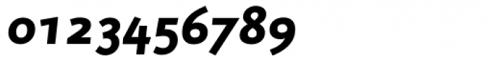 RTF Credo Black Italic SC Font OTHER CHARS
