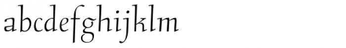 RTF Stern Pro Font LOWERCASE