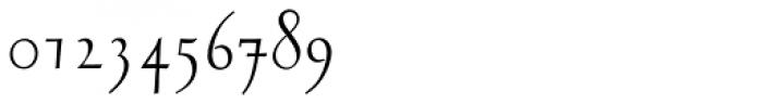 RTF Stern Regular Font OTHER CHARS