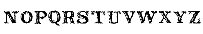 Rustic Font LOWERCASE