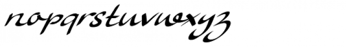 Ruhaniyat Italic Font LOWERCASE