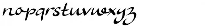 Ruhaniyat Font LOWERCASE