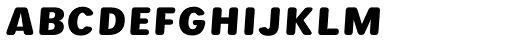 Runde Wien Pro Unic Obl Medium Font UPPERCASE
