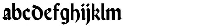 Rundgotisch No2 Pro Font LOWERCASE