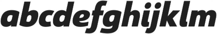 Savigny Black Norm Italic otf (900) Font LOWERCASE