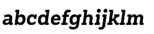 Sanchez Niu Bold Italic Font LOWERCASE