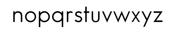 SansSerifBookFLF Font LOWERCASE