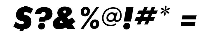 SansSerifExbFLF-Italic Font OTHER CHARS