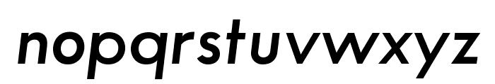 SansSerifFLF-DemiItalic Font LOWERCASE