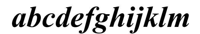 Sanskrit--Roman-Bold-Italic Font LOWERCASE