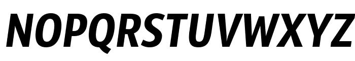 SansusWebissimo-Italic Font UPPERCASE
