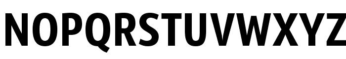 SansusWebissimo Font UPPERCASE