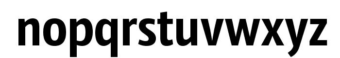 SansusWebissimo Font LOWERCASE