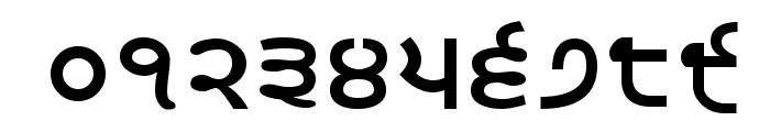 Satluj Bold Font OTHER CHARS