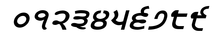 Satluj BoldItalic Font OTHER CHARS