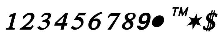 Satluj BoldItalic Font UPPERCASE