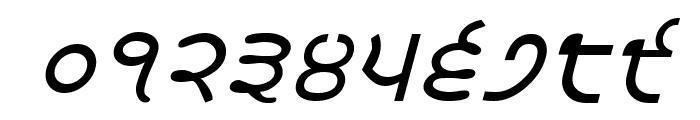 Satluj Italic Font OTHER CHARS