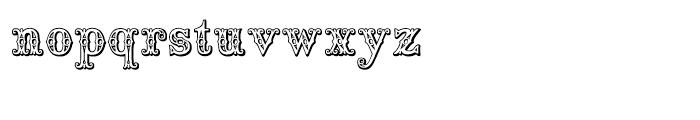 Saddlery Regular Font LOWERCASE