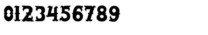 Salloon Regular Font OTHER CHARS