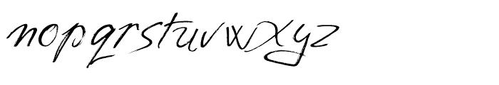 Salvador Regular Font LOWERCASE