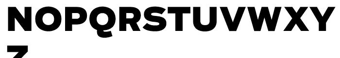 Salvo Sans Black Font UPPERCASE