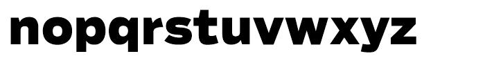 Salvo Sans Black Font LOWERCASE
