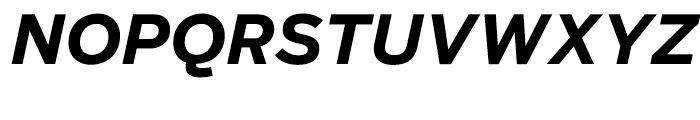 Salvo Sans Bold Italic Font UPPERCASE
