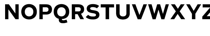Salvo Sans Bold Font UPPERCASE