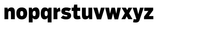 Salvo Sans Condensed Black Font LOWERCASE
