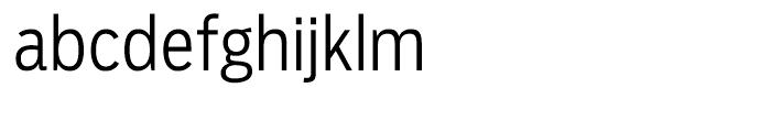 Salvo Sans Condensed Light Font LOWERCASE
