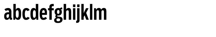 Salvo Sans Extra Condensed Medium Font LOWERCASE