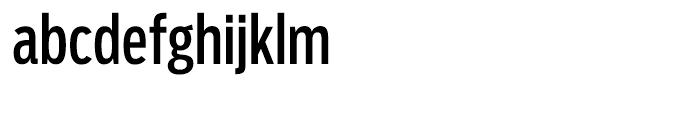 Salvo Sans Extra Condensed Regular Font LOWERCASE