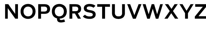 Salvo Sans Medium Font UPPERCASE