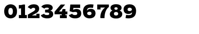 Salvo Serif Black Font OTHER CHARS