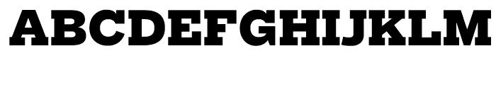 Salvo Serif Black Font UPPERCASE