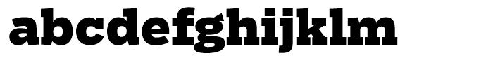 Salvo Serif Black Font LOWERCASE