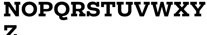 Salvo Serif Bold Font UPPERCASE